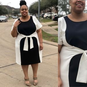 Navy/Off White ColorBlock Dress